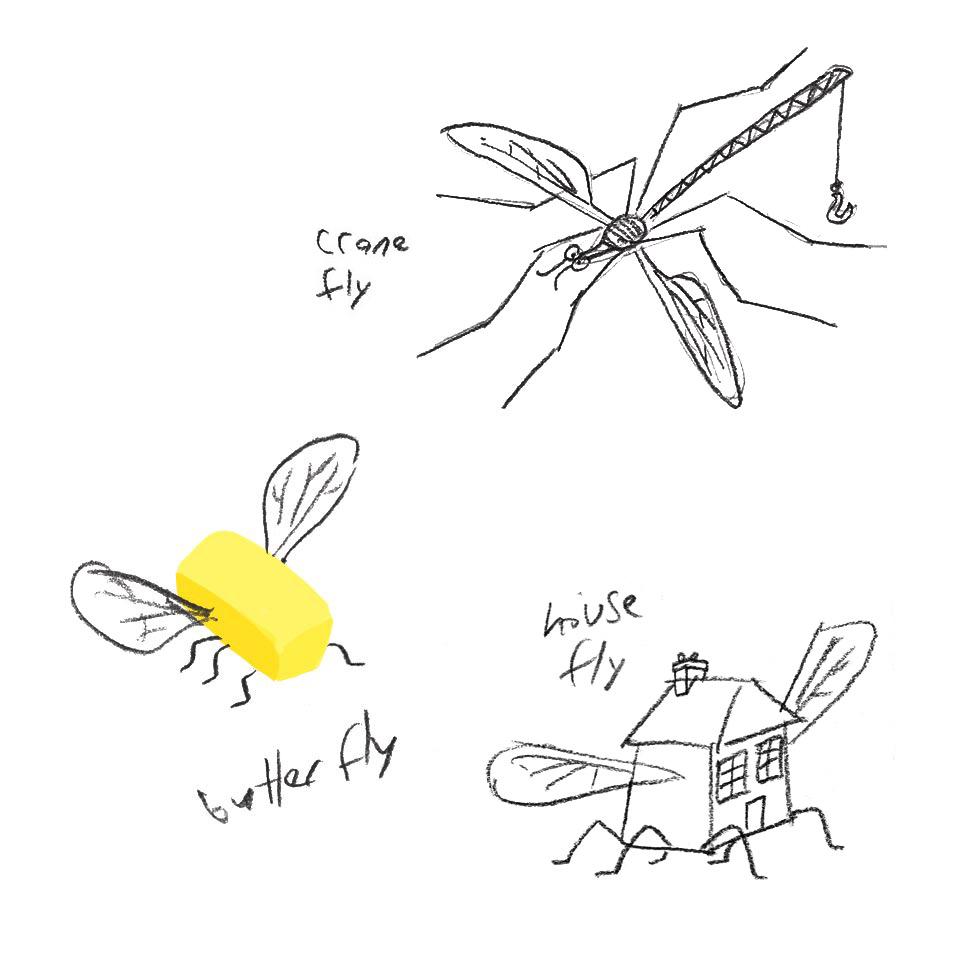 Fly puns sketch